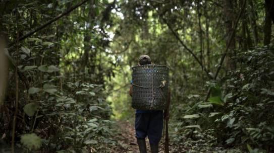 Manejo sustentable y cadenas de valor – ACEAA