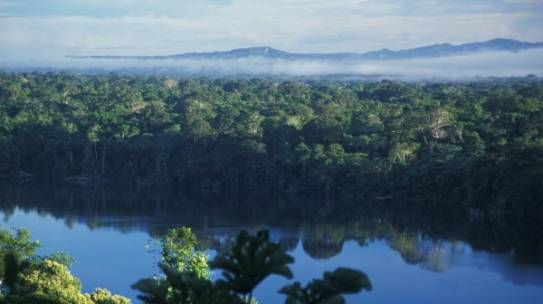Área protegida municipal Bajo Madidi: Puente entre territorios indígenas y áreas protegidas en la Amazonia boliviana – CI